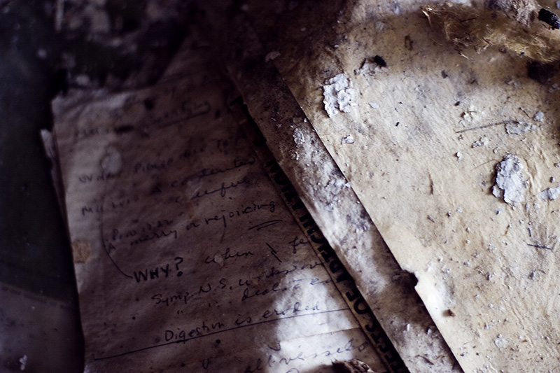 Sheets of old, decomposing paper.