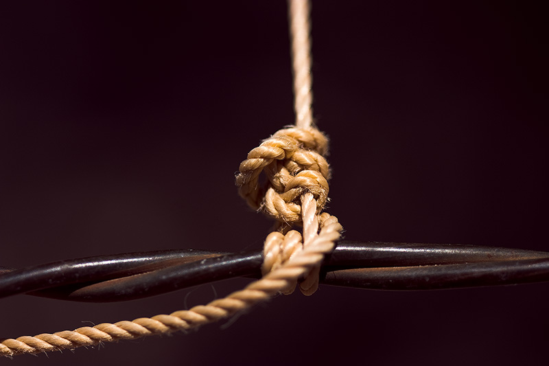 An orange string tied to a barbed-wire fence.