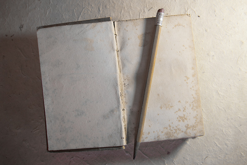 An old, weathered book open to a blank page, and a pencil sitting atop.