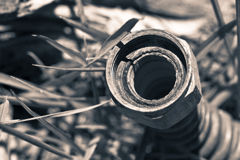 The end of a flexible copper pipe, among grass.