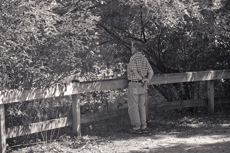 A man standing at a fence, looking out over a pond.