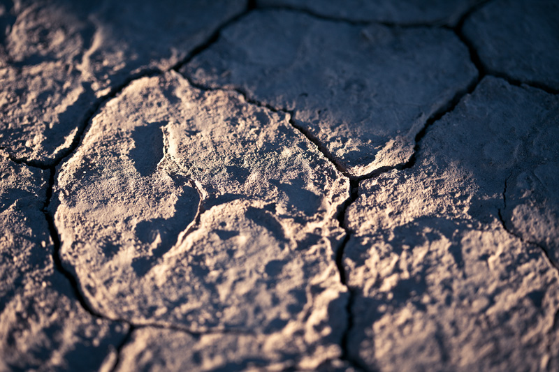 Cracked earth in twilight.