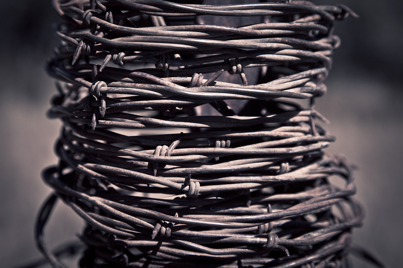 Coiled barbed wire.