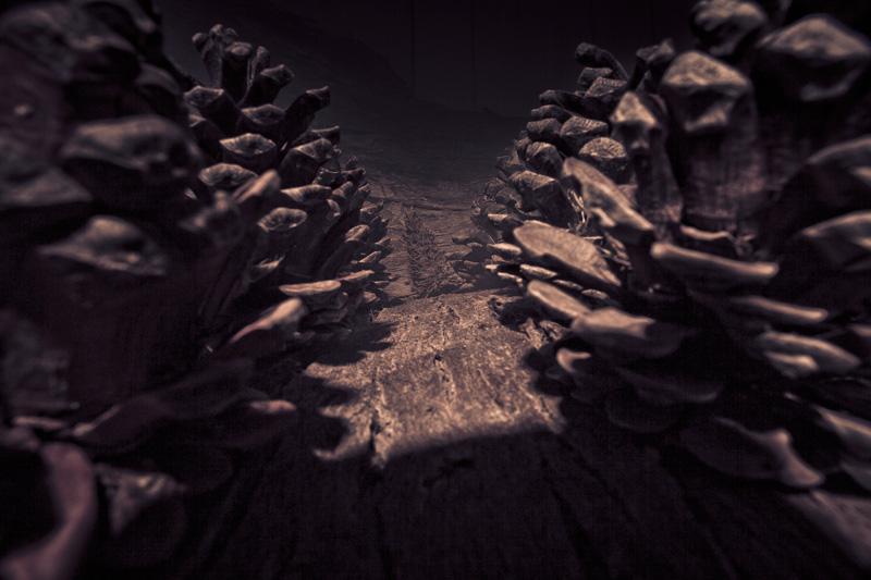 A dark and narrow corridor.
