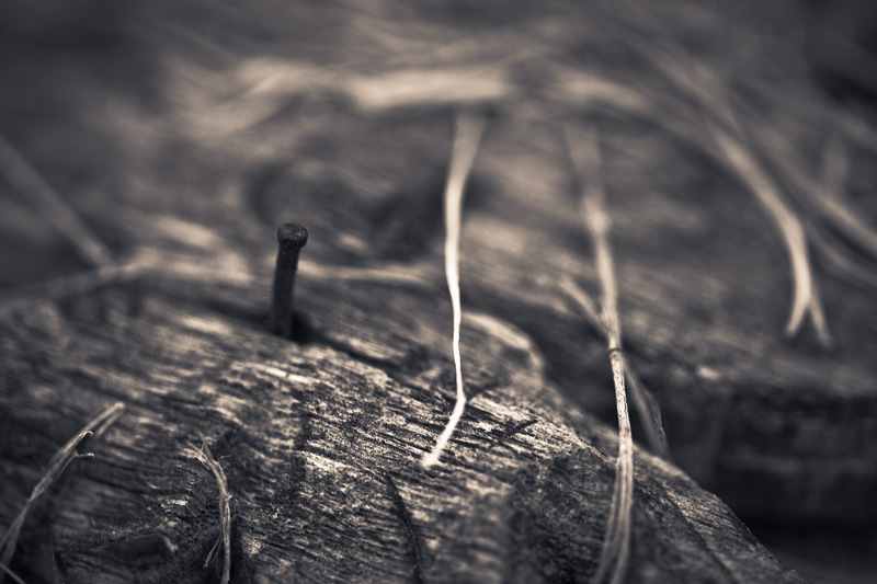 A loose nail sticking out of an old piece of wood.