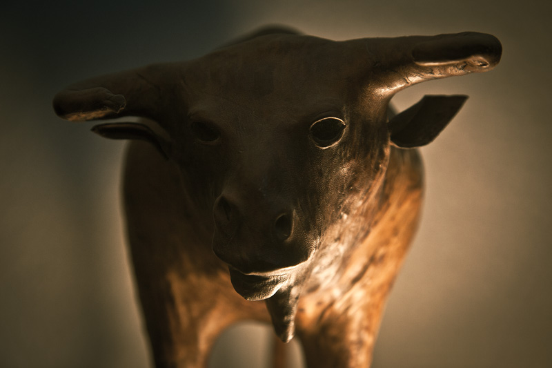A dramatically-lit leather bull staring defiantly into the camera.