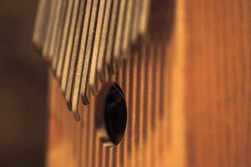 A musical instrument.