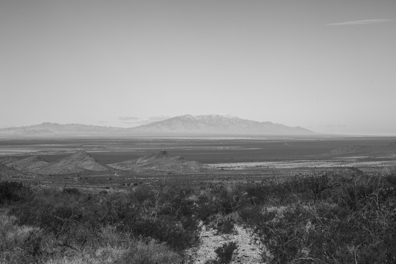 A faint road leading off into the distance with the Pinaleño Mountains beyond.